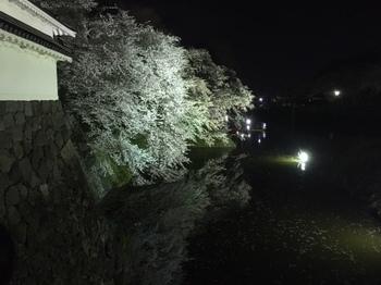 2017-4-22-4.JPG