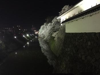 2017-4-22-9.JPG